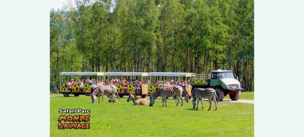 Op safari in de Ardennen 2020