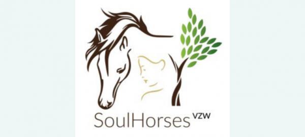 Paardenverzorger voor een dag