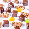 Op ontdekkingstocht naar chocolade